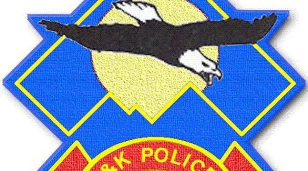Smuggler arrested, 30-cft illicit timber seized in Budgam: Police