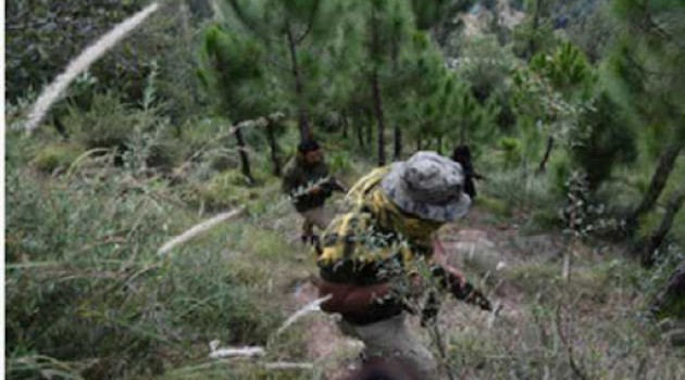 Gunfight resumes in Poonch, enters Day 12